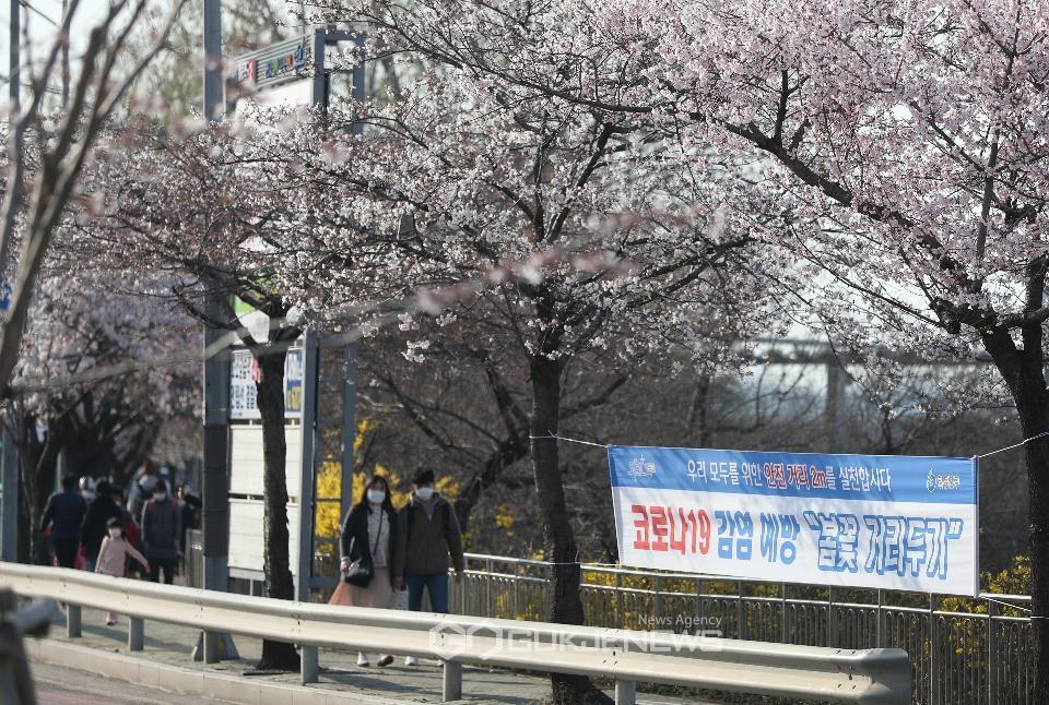 4월, 여의도 벚꽃 길 전면 통제