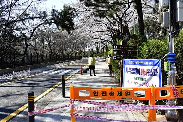 [고강도 사회적 거리두기] 올핸 잔인한 4월의 봄