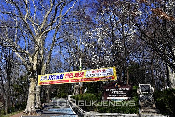 [고강도 사회적 거리두기] 4월의 잔인한(?) 봄
