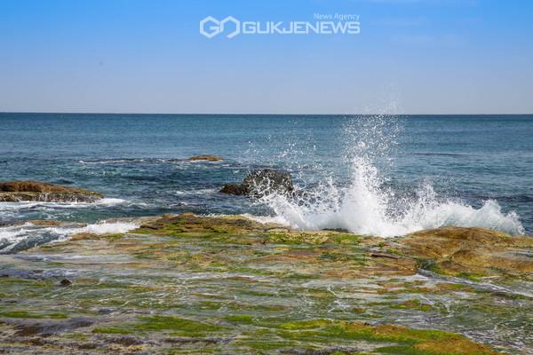 동해 해안의 모습(사진 김진호)