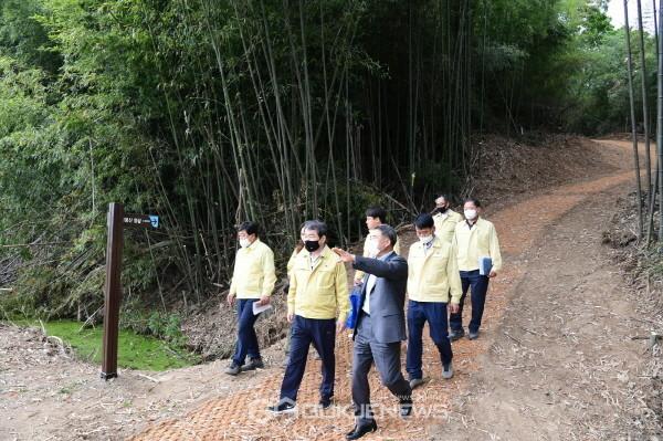 김천시 달봉산 아름다운 대나무숲길 조성(사진=김천시)