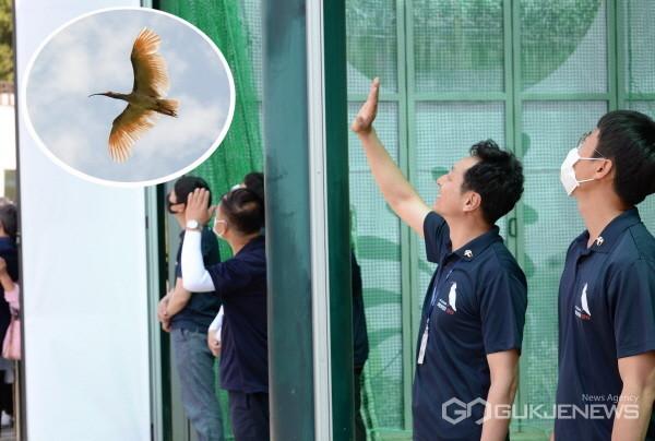(사진제공=창녕군) 28일 열린 제2회 우포따오기 야생방사 행사에서 창녕군 우포따오기과 직원이 야생방사된 따오기에게 손을 흔들며 안녕을 기원하고 있다.