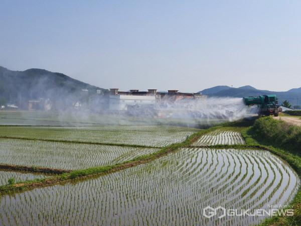 (사진제공=광주시) 무농약 쌀 생산단지 친환경 1차 광역방제 추진