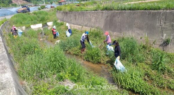 봉화군 법전면, 생활 속 거리두기 홍보와 환경정화활동 실시