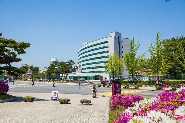 충북대 캠퍼스 전경.(사진제공=충북대학교)