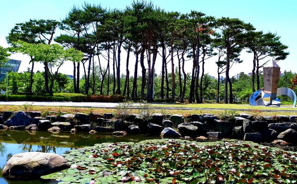 충남도청앞정원(사진:박창규기자)