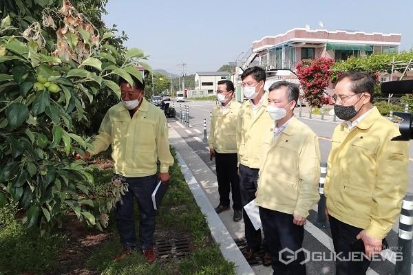 김장회충북도행정부지사(오른쪽두번째)가4일과수화상병이발생한충주현장을방문하고있다.(사진제공=충북도청)