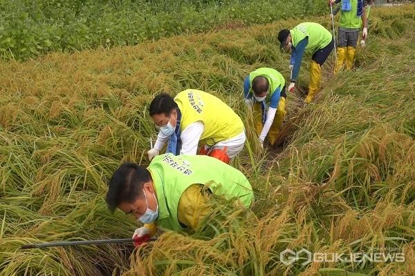 괴산군 공무원들, 휴일 반납하고 지역 곳곳에서 일손봉사 나서