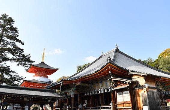 [여행을 떠나요] 도요토미 히데요시가 다녔던 절부터 아톰 아빠 기념관까지 日 효고현 랜선여행 한신편