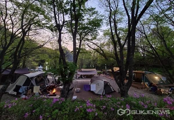 다리안 캠핑장 모습(사진=단양군)