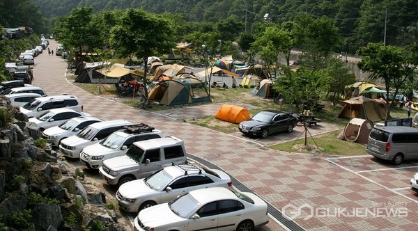 소선암 오토 캠핑장 모습(사진=단양군)