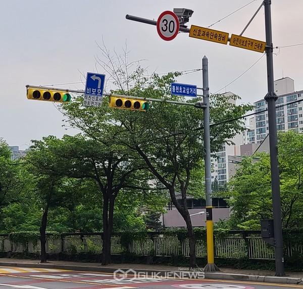 풍천초등학교삼거리에 설치된 노란색 바탕의 신호등 모습(사진=용인시)