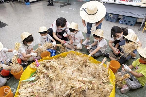 11일, 금정구청에서 청사 내 화단에서 파종해 직접 재배한 보리를 아이들과 수확 탈곡하는 '도시농부, 아이농부 보리 수확 체험'행사를 열었다/제공=금정구청