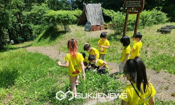 민북지역국유림관리소에서 운영하는 배꼽유아숲탐험대에서 유아들이 즐겁게 지내고 있다. 사진=민북지역국유림관리소