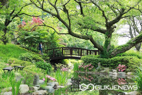 경주엑스포대공원 내 위치한 '비밀의 정원'은 500년 수령 왕버들과 연못이 이색적인 분위기를 자아낸다