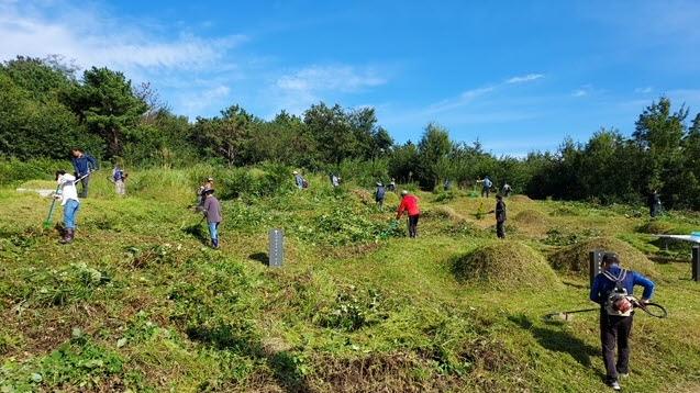 홍성군 주민들이 무연분묘 벌초 봉사활동을 하고 있다.