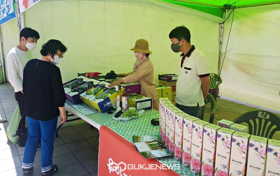 영천와인과 포도 판매