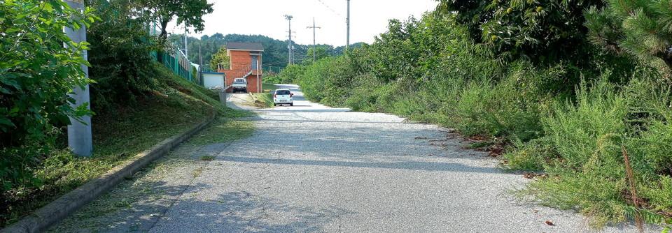 어린이 집 입구에서 축구장 족구장 테니스장 궁도장으로 올라가는 풀이 무성한 오른쪽은 소형차가 한편에 주차해면 아카시아 나무 등으로 지나는 차량들이 피해도 발생된다.