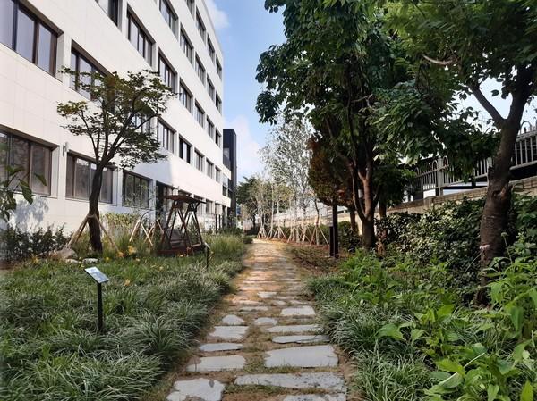 처인구 고림동 덕영고등학교 내 학교숲 모습(사진=용인시)