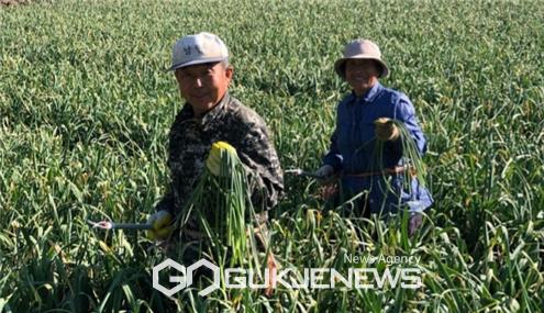 수확량 감소와 코로나19 여파로 농민들 울상
