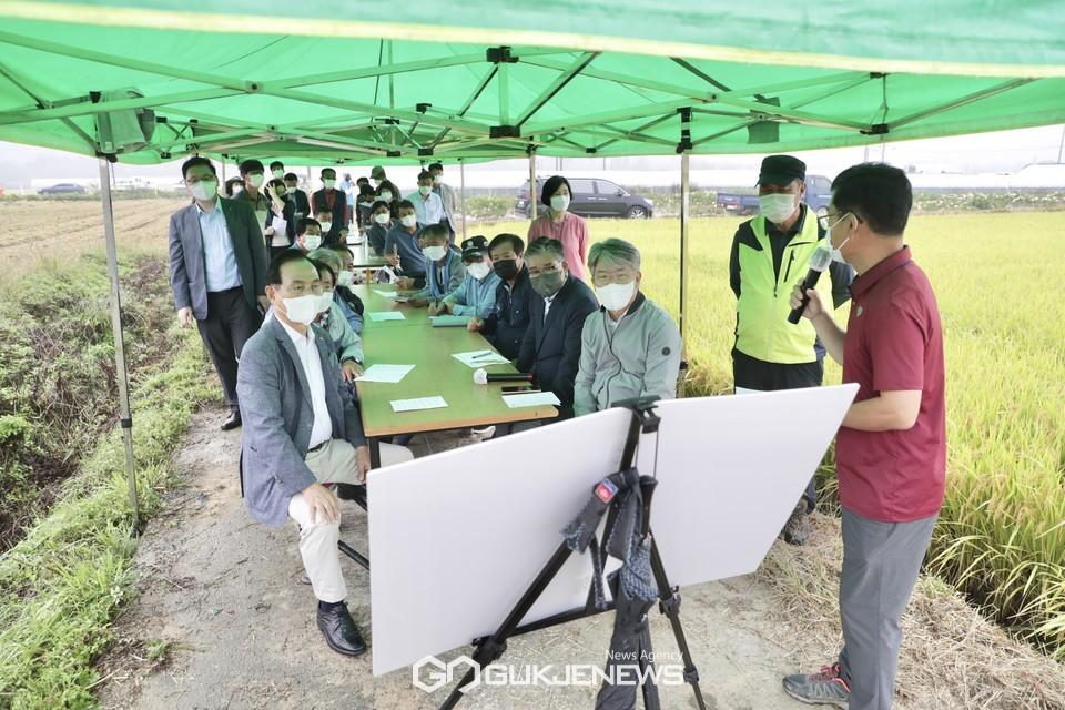 천안시농업기술센터가 6일 병천면 가전리 시험포장에서 천안흥타령쌀의 새로운 품종을 선발하기 위해 현장평가회를 진행하고 있다.