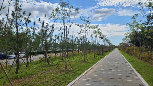 제3경인고속도로변3ha규모미세먼지차단숲조성